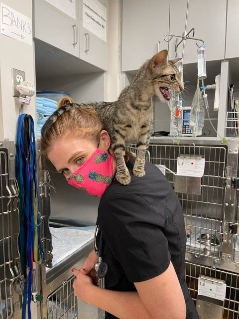 Christine Klippen with cat on shoulders